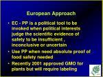 european approach