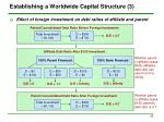 establishing a worldwide capital structure 3