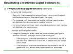 establishing a worldwide capital structure 6