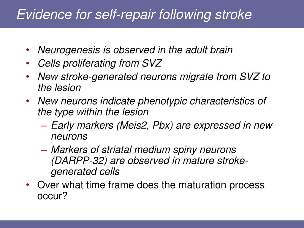Evidence for self-repair following stroke