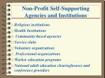 non profit self supporting agencies and institutions