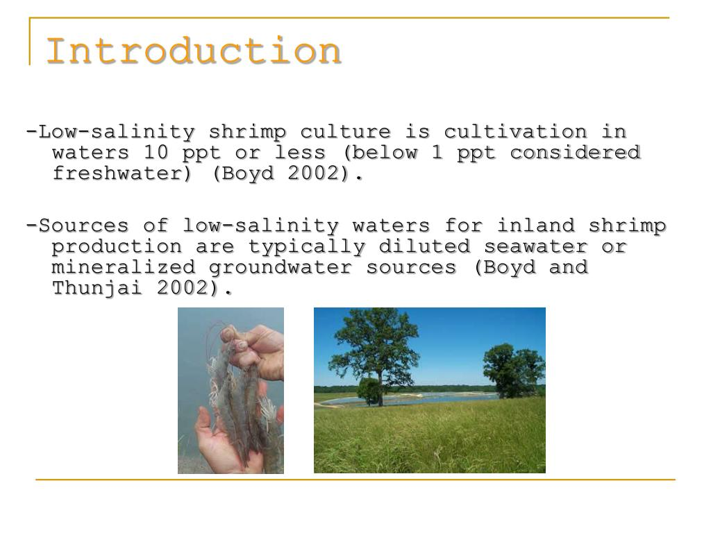 -Low-salinity shrimp culture is cultivation in waters 10 ppt or less (below 1 ppt considered freshwater) (Boyd 2002).