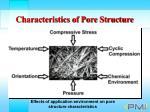 characteristics of pore structure8