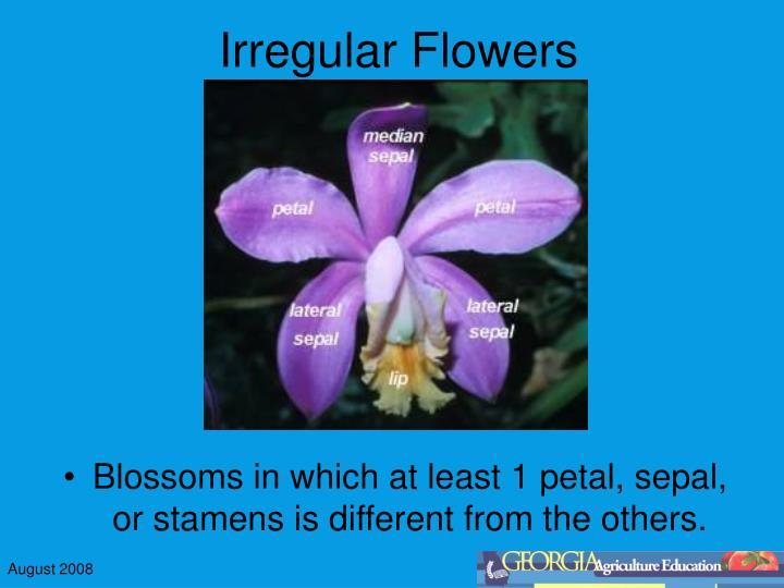 Irregular flowers