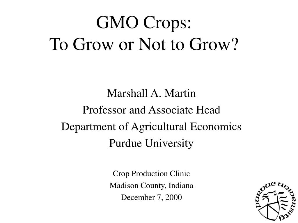 gmo crops to grow or not to grow l.