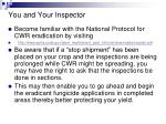 you and your inspector