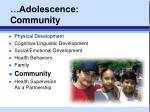 adolescence community