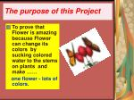 the purpose of this project