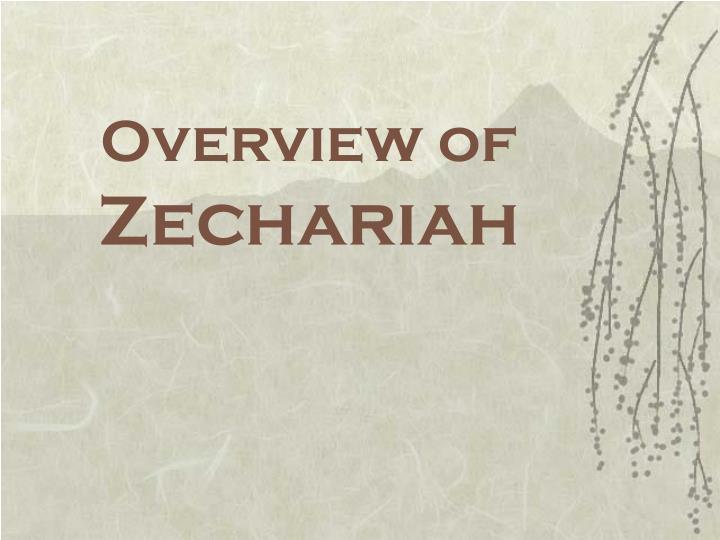 overview of zechariah n.