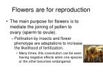 flowers are for reproduction