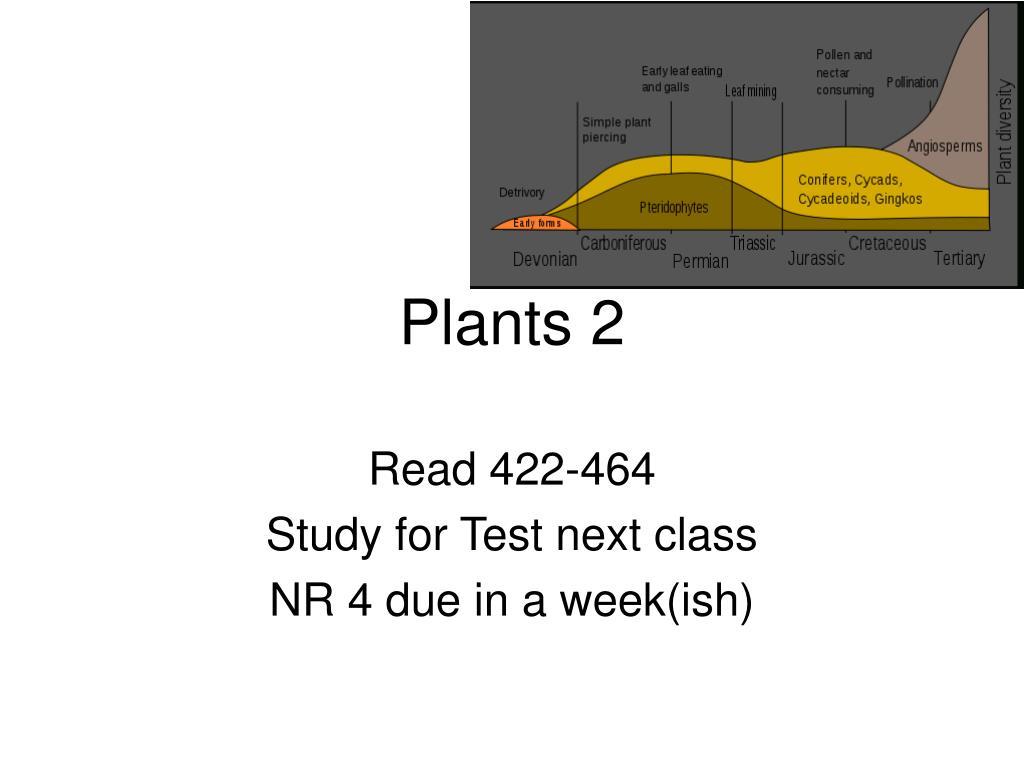 plants 2 l.