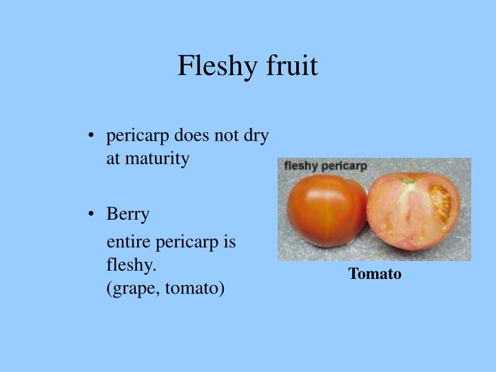 Fleshy fruit