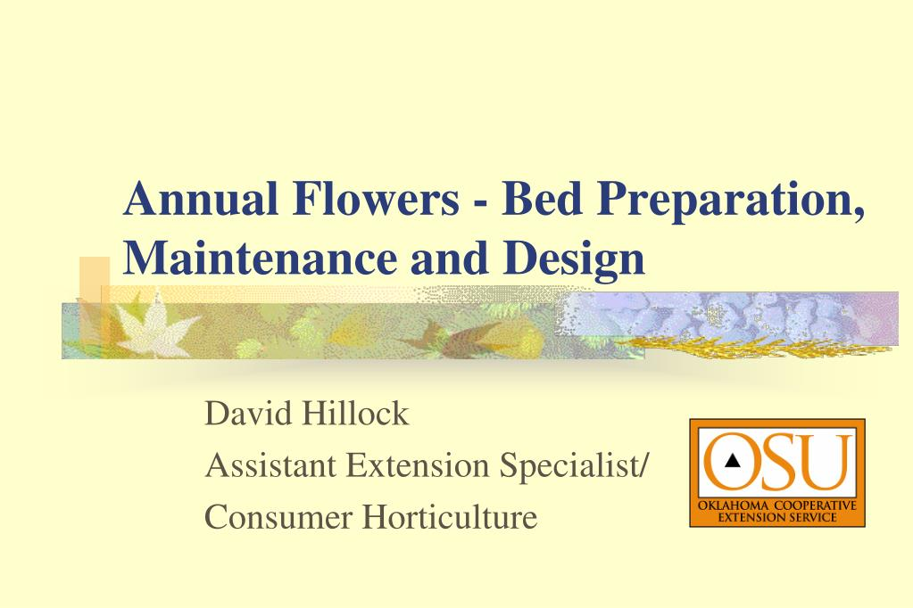 annual flowers bed preparation maintenance and design l.