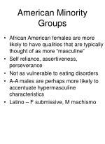american minority groups
