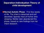 separation individuation theory of child development