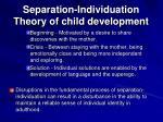 separation individuation theory of child development21