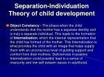 separation individuation theory of child development22