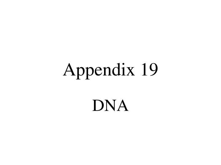 appendix 19 n.