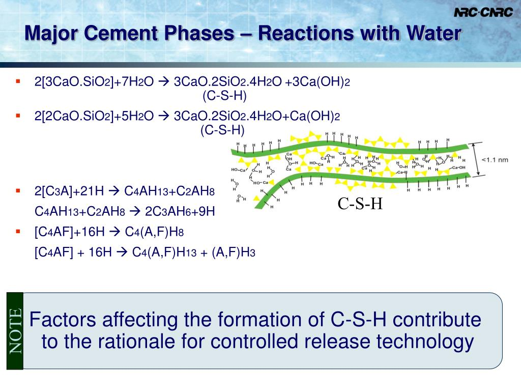 Major Cement Phases – Reactions with Water