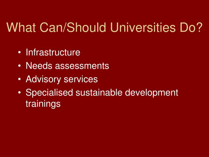 What Can/Should Universities Do?