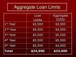 aggregate loan limits