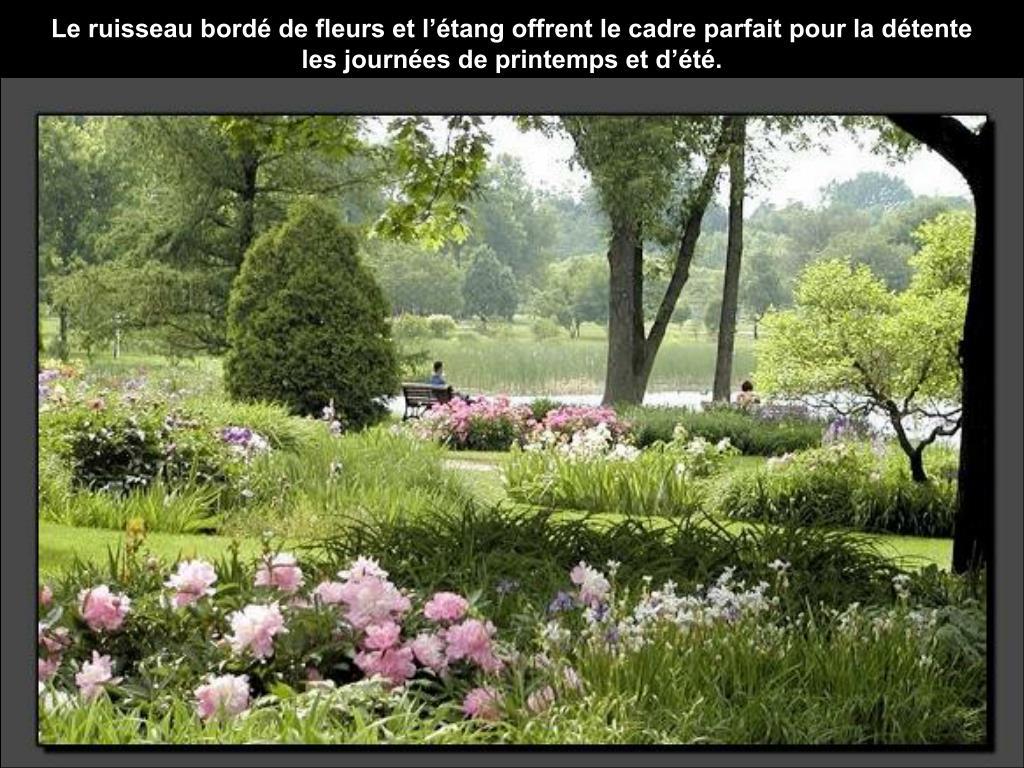 Le ruisseau bordé de fleurs et l'étang offrent le cadre parfait pour la détente