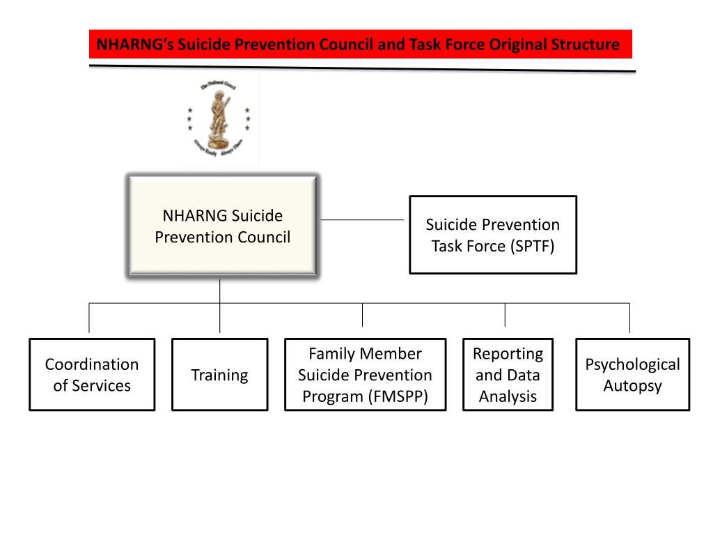 NHARNG's Suicide Prevention Council and Task Force Original Structure