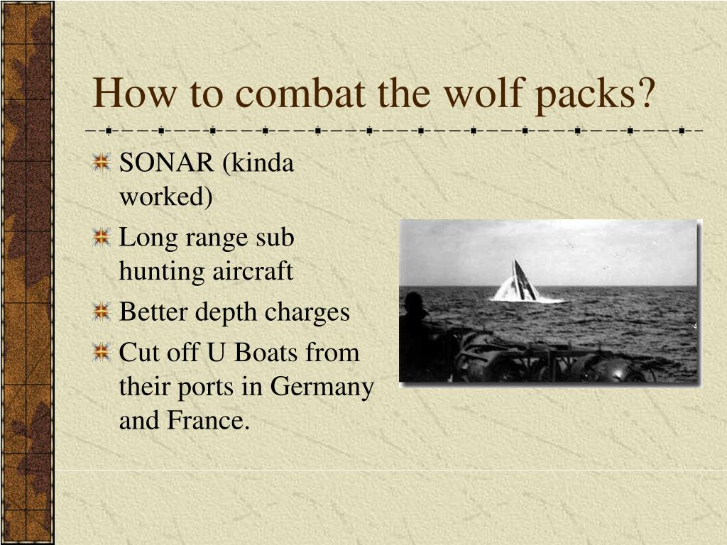 How to combat the wolf packs?