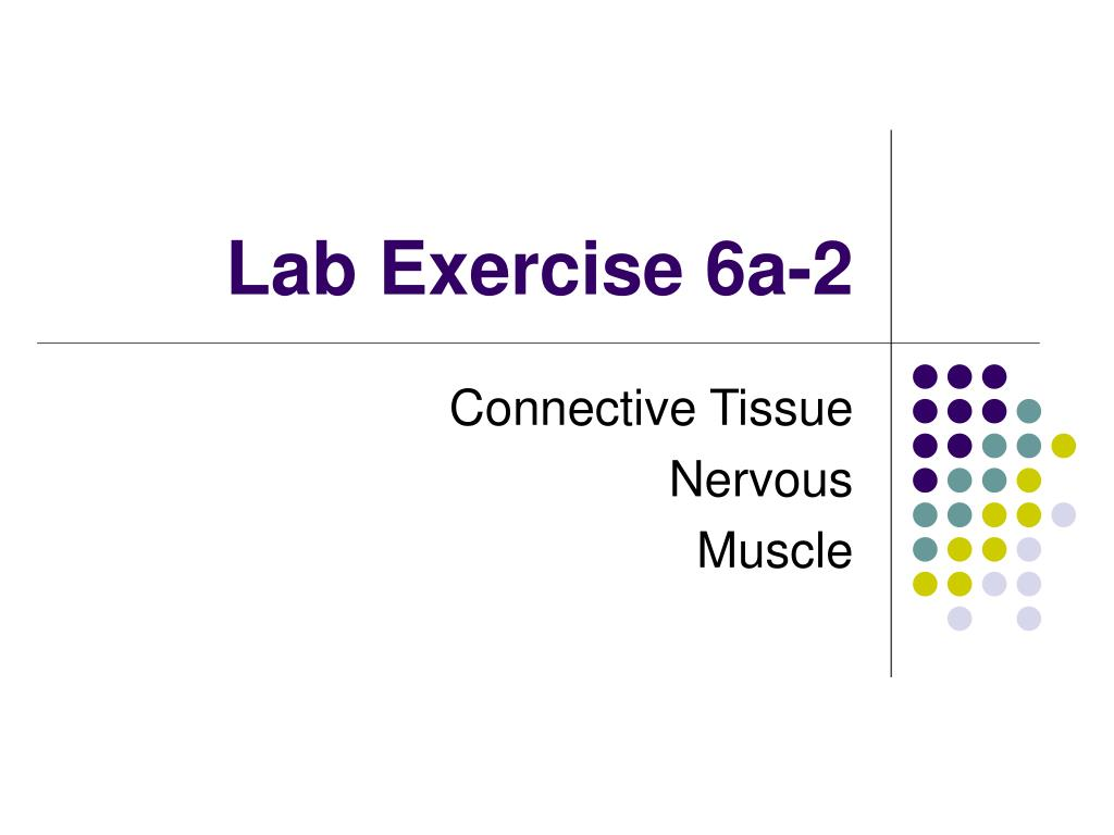 lab exercise 6a 2 l.