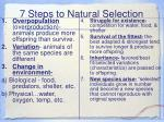 7 steps to natural selection