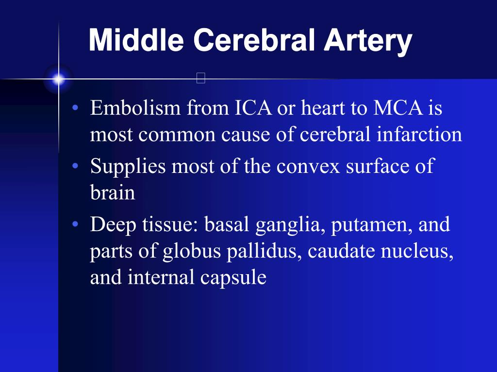 Middle Cerebral Artery