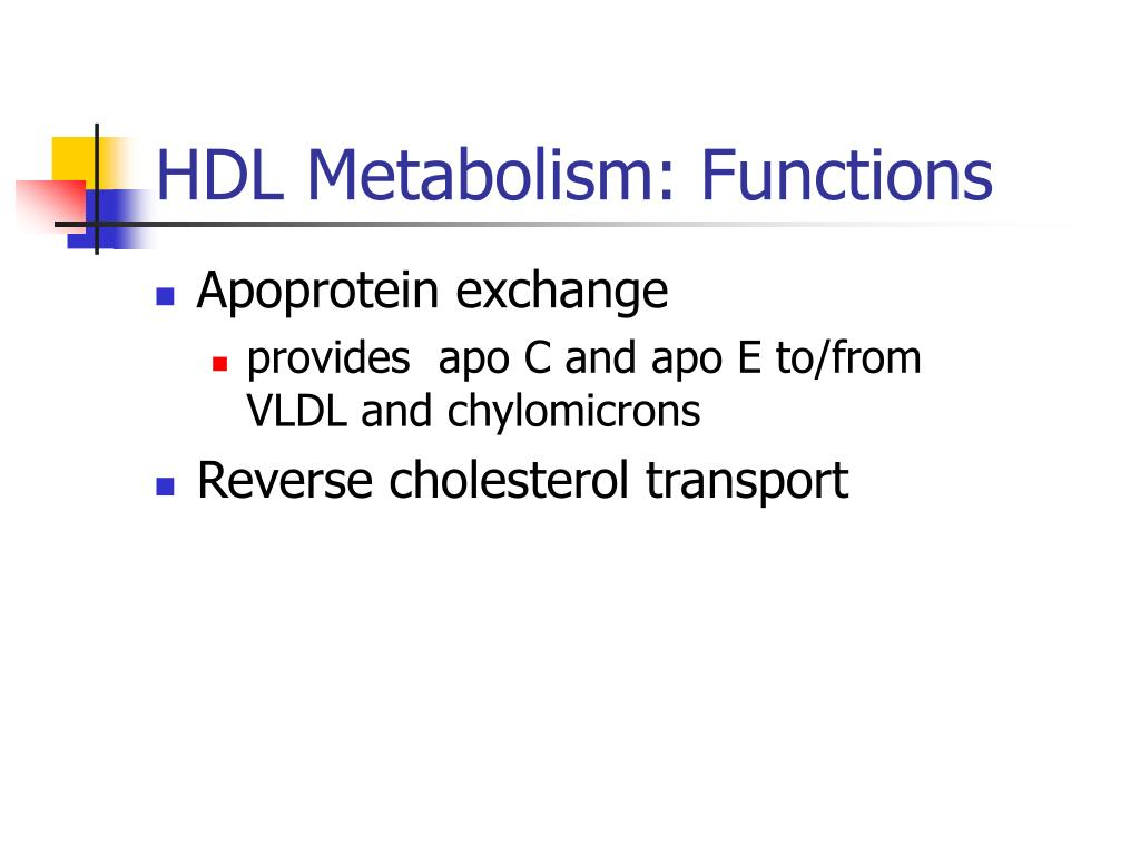 HDL Metabolism: Functions
