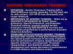 aerobic endurance training