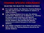 training specific endurance44