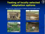 testing of locally selected adaptation options