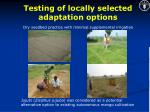 testing of locally selected adaptation options13