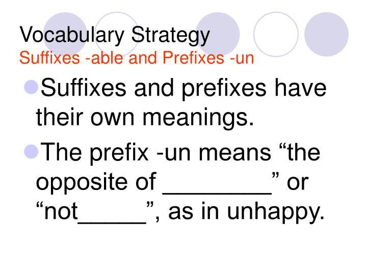 Vocabulary Strategy
