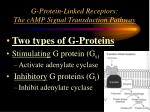 g protein linked receptors the camp signal transduction pathway
