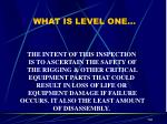 what is level one