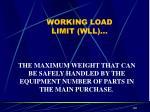 working load limit wll