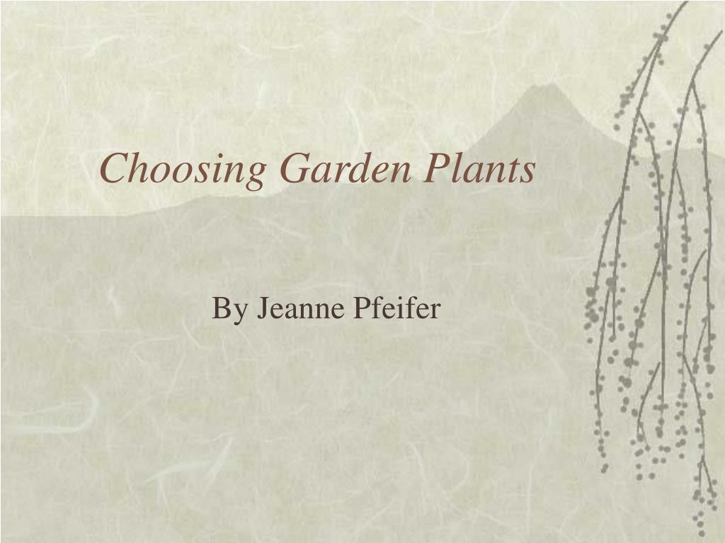 Choosing Garden Plants