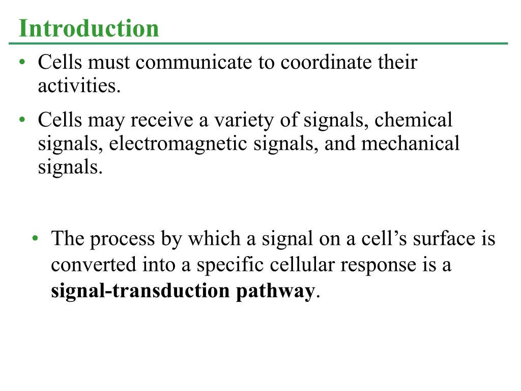 Cells must communicate to coordinate their activities.