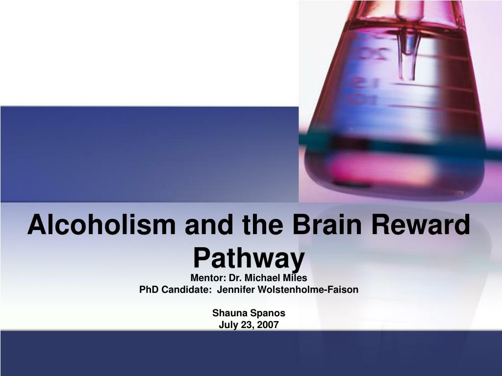 alcoholism and the brain reward pathway l.