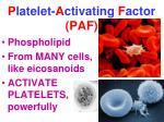p latelet a ctivating f actor paf