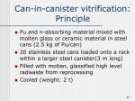 can in canister vitrification principle