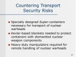 countering transport security risks