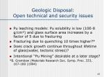 geologic disposal open technical and security issues