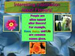 interesting information about flowers