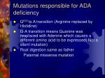 mutations responsible for ada deficiency