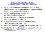 what does brachet mean from malory s morte d arthur page in brackets